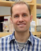 Stephen Renaud, Associate Scientist, Children's Health Research Institute